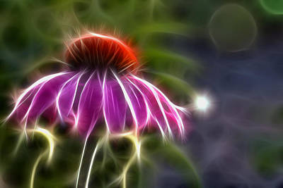 Art Print featuring the photograph Electrified Coneflower by Lynne Jenkins