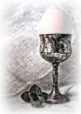 Photograph - Elegant White Easter  by Danuta Bennett