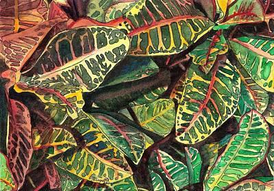 Elena's Crotons Art Print