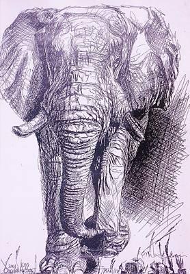 Elephant Arriving Art Print