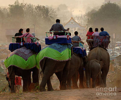 Photograph - Elephant Festival Laos by Bob Christopher