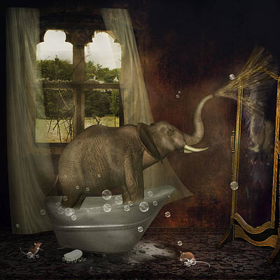 Elephant In Bath Art Print
