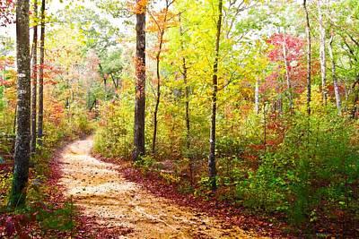 Ocoee Photograph - Elfin Trail by Debra and Dave Vanderlaan