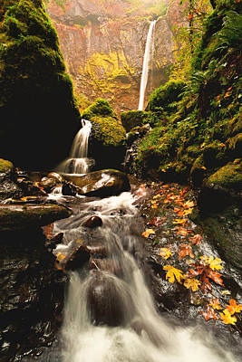 Elowah Photograph - Elowah Falls In Autumn by Alvin Kroon