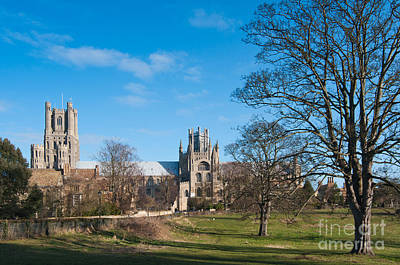 Art Print featuring the photograph Ely Scenic by Andrew  Michael