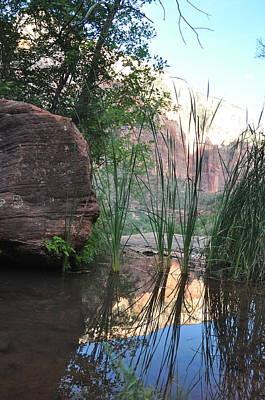 Emerald Pool- Zion National Park Art Print by Michael Bartlett