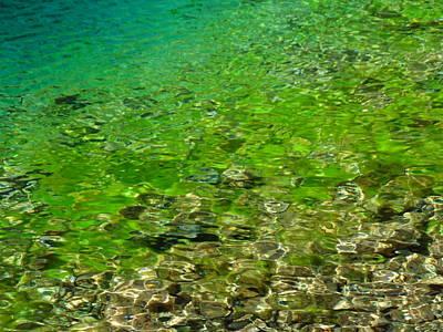 Photograph - Emerald Reflections by Mark Lehar