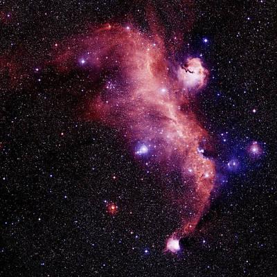 Ic 2177 Photograph - Emission Nebulae by Celestial Image Co.