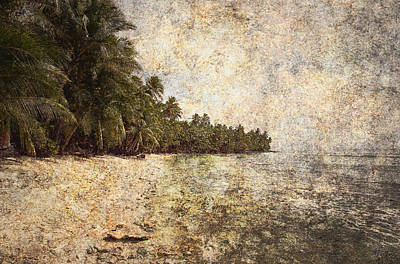 Empty Tropical Beach 2 Print by Skip Nall