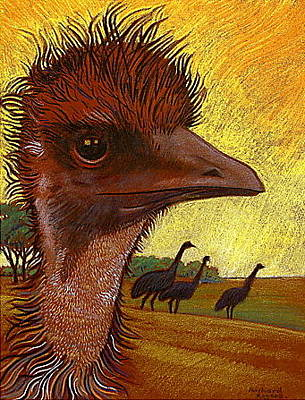Emu Drawing - Emu As A Redhead by Richard Rogers