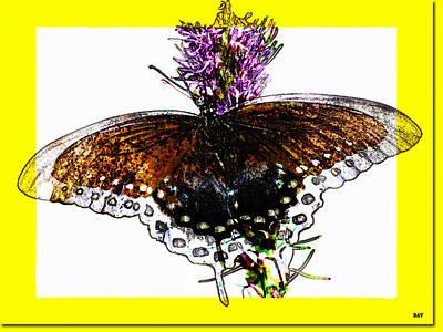 Enchanted Wings Card Art Print by Debra     Vatalaro