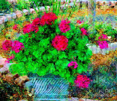 Photograph - End Of Season Geraniums - A Floral Paintograph by Christine S Zipps