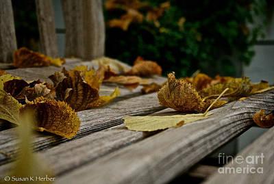 Photograph - Endings by Susan Herber