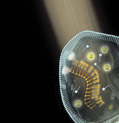Energised Protocell, Artwork Print by Henning Dalhoff