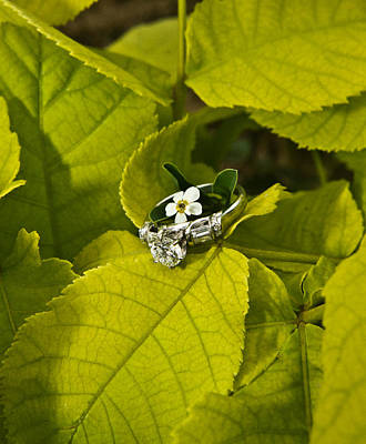 Leaf Engagement Ring Photograph - Engagement Ring And Flower 1 by Douglas Barnett
