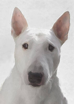 Purebred Digital Art - English Bull Terrier by JG Keevil