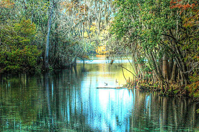Entrance To Swanee Art Print by Ronald T Williams