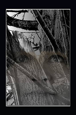 Photograph - Environmental Fusion by Marie Jamieson