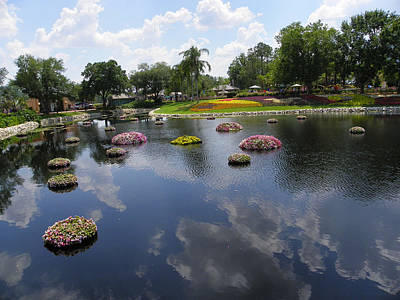 Photograph - Epcot Islands by Judy Wanamaker