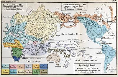 Social Darwinism Photograph - Ernst Haeckel Map Lemuria Human Origins by Paul D Stewart