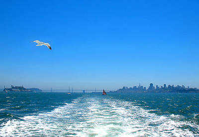 Photograph - Escaping Alcatraz by Connie Fox