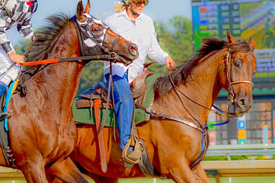 Blood Bay Horse Photograph - Escort by Betsy Knapp