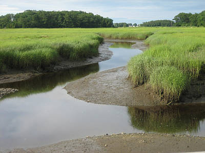 Photograph - Essex Ma Marsh by Melissa Partridge