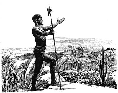 Black Cactus Photograph - Esteban (fl. 1527-39) by Granger