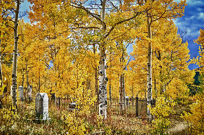 Photograph - Eternal Autumn Resting Place by Kevin Munro