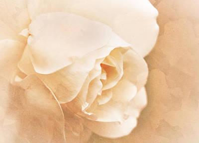 Eternally Photograph - Eternally by Claudia Moeckel
