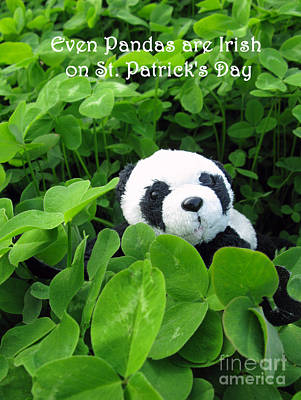 Photograph - Even Pandas Are Irish On St. Patrick's Day by Ausra Huntington nee Paulauskaite