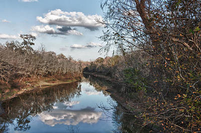 Photograph - Evening At Brazos Bend by James Woody