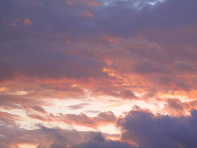 Laguna Beach Photograph - Evening Clouds by Linda Larson