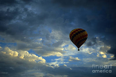 Photograph - Evening Flight by Bob Christopher