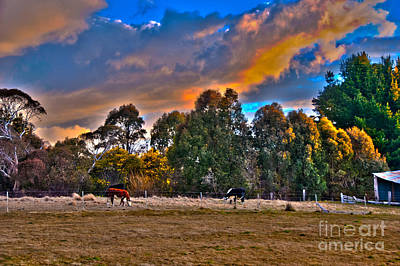 Photograph - Evening Light Hdr by Fran Woods