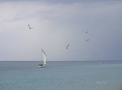 Photograph - Evening Sail by Peggy King