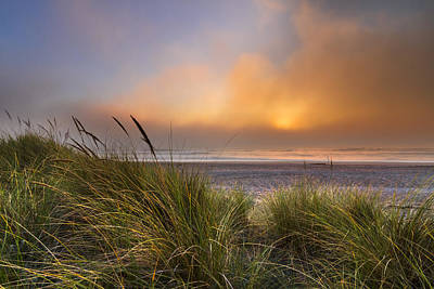 Driftwood Beach Fog Wall Art - Photograph - Evening's Golden Fog by Debra and Dave Vanderlaan