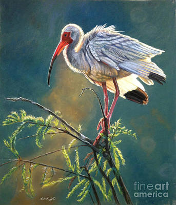 Ibis Painting - Everglades Vision by Deb LaFogg-Docherty