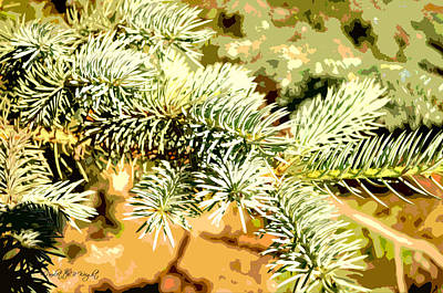 Photograph - Evergreen by Paulette B Wright