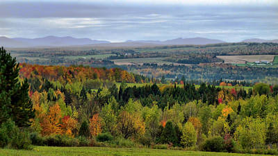 Photograph - Evergreens And Fall Foliage In A Rural Autumn Landscape by Chantal PhotoPix