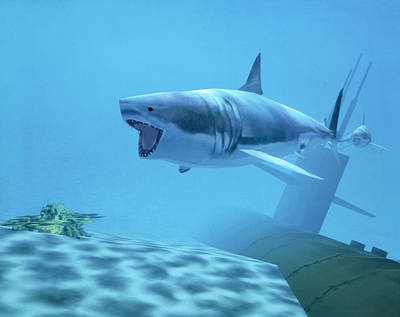 Example Of Reality Centre Graphics, Shark Art Print by David Parker