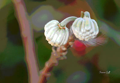 Floral Photograph - Exotic Floral With Feather by Suzanne Gaff