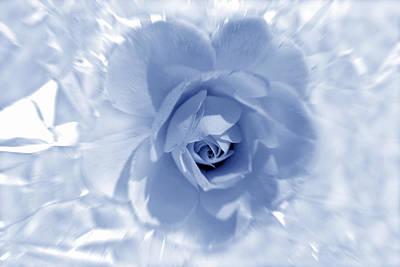Exquisite Blue Original