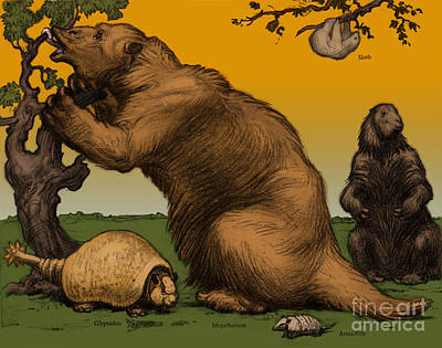 Ground Sloth Photograph - Extinct Fauna by Photo Researchers, Inc.