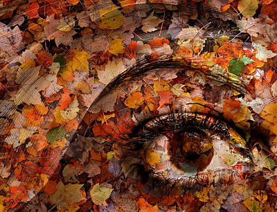 Photograph - Eye Of Autumn by Joe Bonita