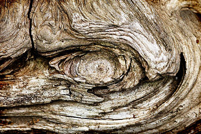 Eye Of Mystery Knot In Wood Art Print by Tracie Kaska