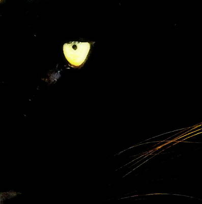 Black Panther Photograph - Eye Of The Panther by Karen Wiles