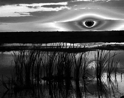 Photograph - Eye Over Everglades by David Lee Thompson