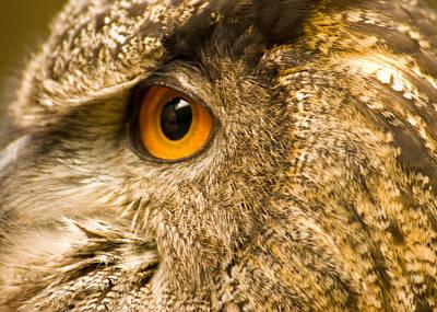 Photograph - Eye Reflection by Kurt Weiss