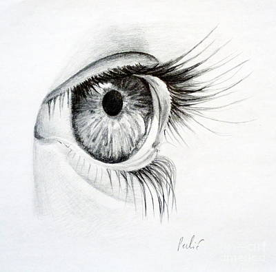 Drawing - Eye Study by Eleonora Perlic
